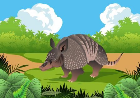 funny-armadillo-in-nature-vector.jpg